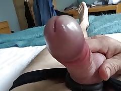 Wanking porn tube - xxx free video